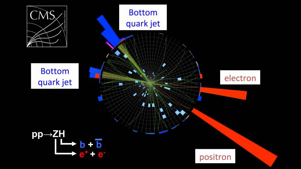 A graph showing the Higgs boson decaying