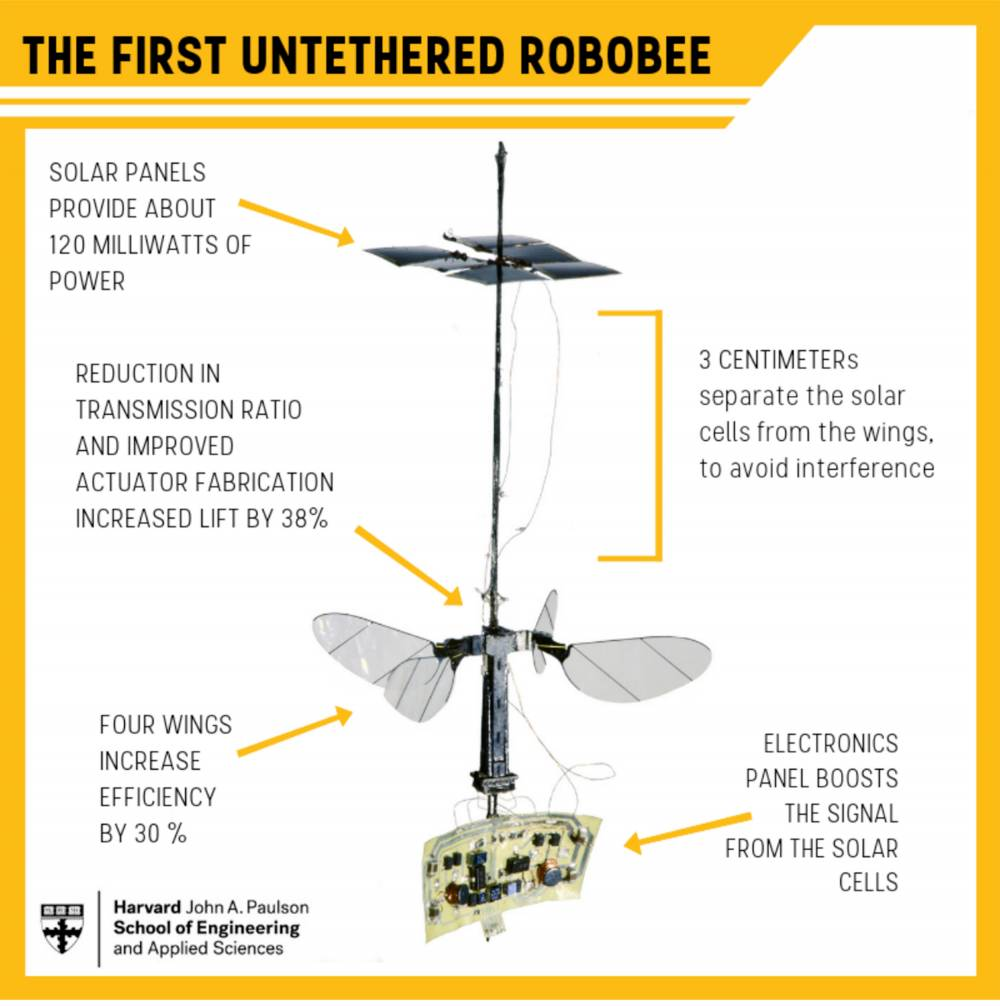RoboBee card with design information