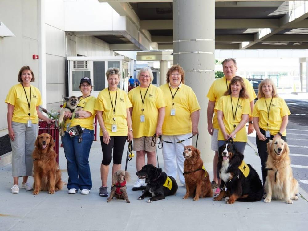 group of people standing with dogs