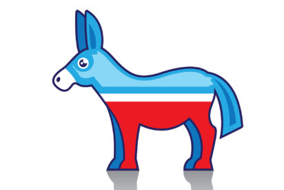 2020 Democratic primary voters