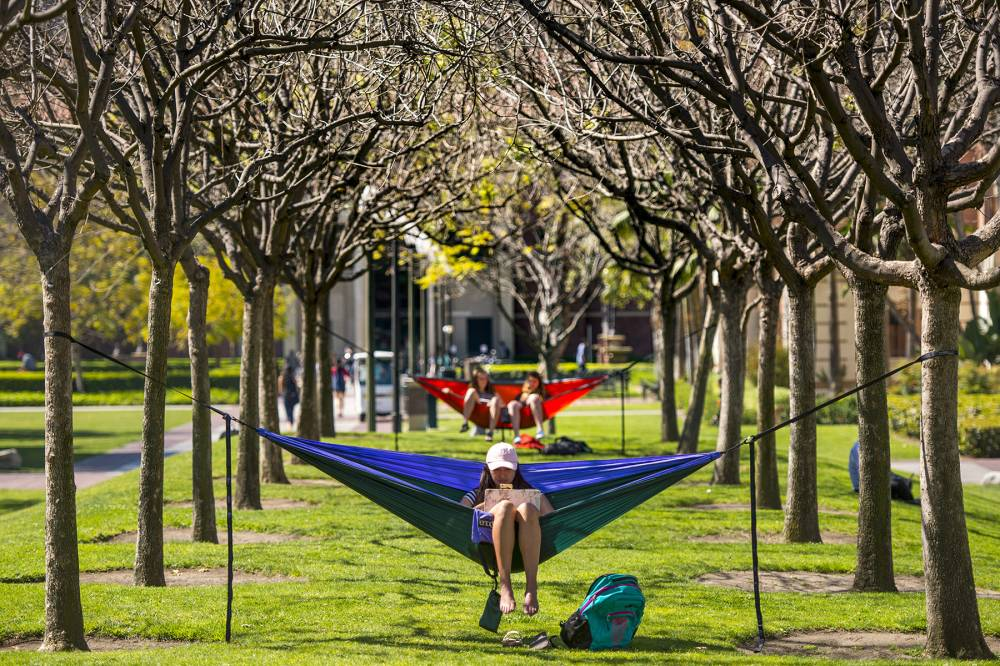 Trojan life: Students studying in hammocks in McCarthy Quad
