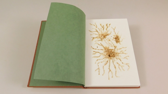 """Honorable mention for bookbinding went to Kyle Carlos '21 for his project, """"Depth."""""""
