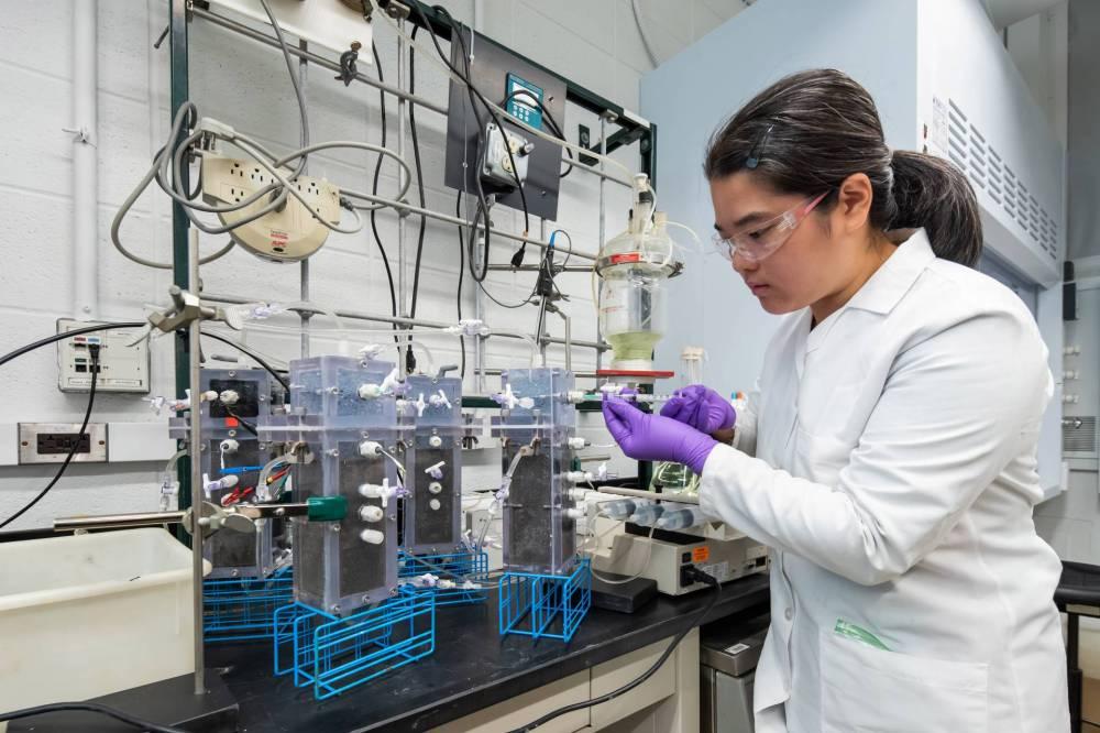 A researcher checks on a machine that analyzes samples