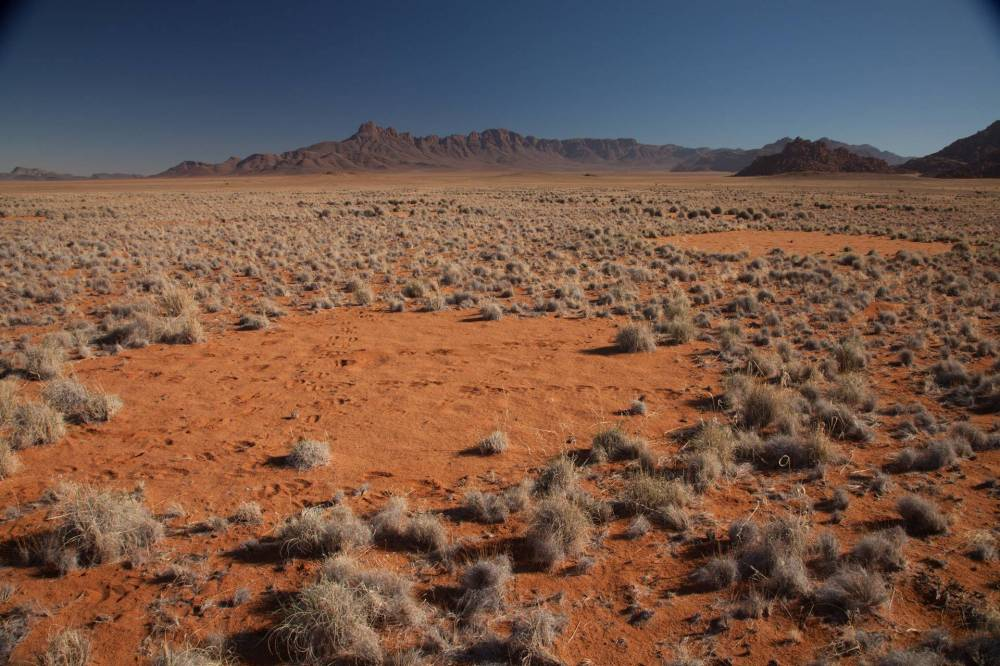Namib fairy circles