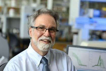 Gregg Semenza