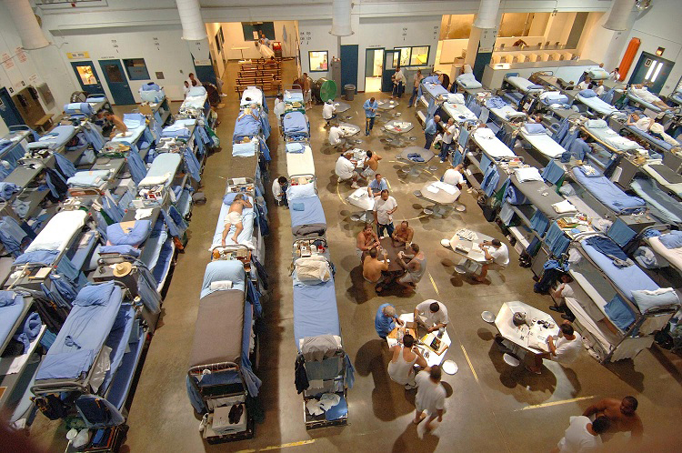 beds lined up in a big room in an overcrowded california prison
