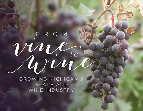 from vine to wine