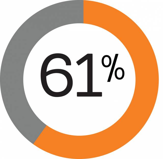 Pie graph showing 61%