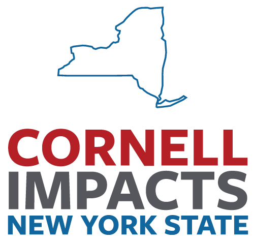 Cornell impacting New York State