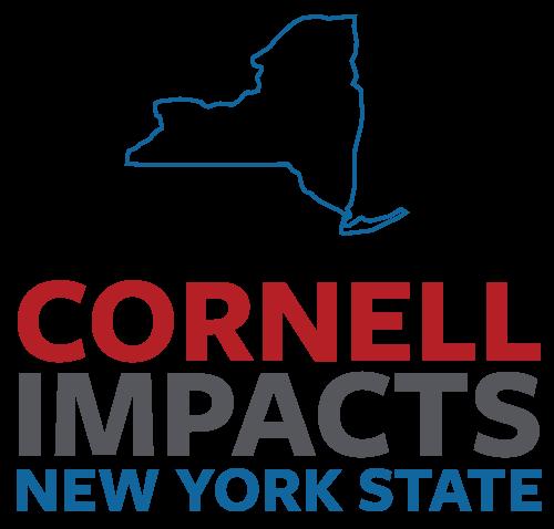 Cornell impacting New York State
