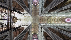 Looking up at the ceiling of a cathedral.