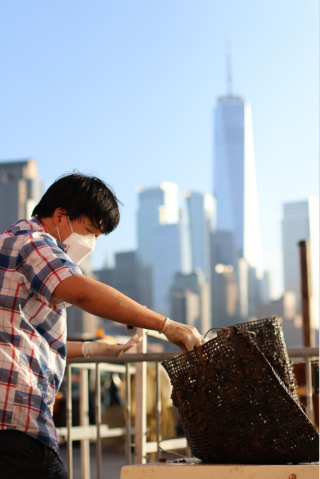 Person reaching into a mesh bag of oysters in NYC