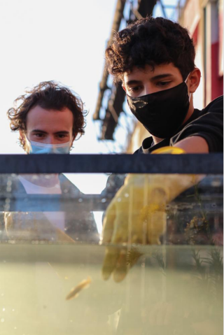 Two students examining water in NYC
