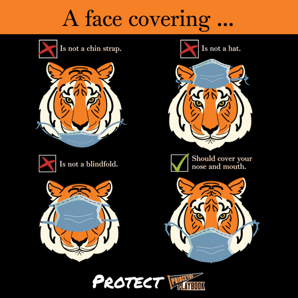 Inforaphic with a tiger demonstrating 3 incorrect ways of wearing a face mask (under the chin, on top of one's head, or over one's eyes. Protect.